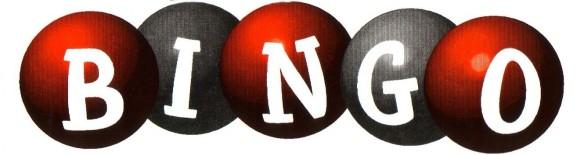 bingo_logo